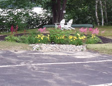 Rain Garden in Parking Lot